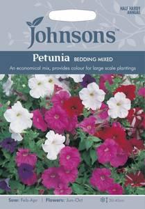 Bilde av Petunia 'Bedding Mixed'