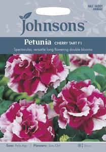Bilde av Petunia 'Cherry Tart'
