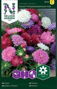 Bilde av Sommeraster 'Dwarf Chrysanthemum Mix' - Callistephus
