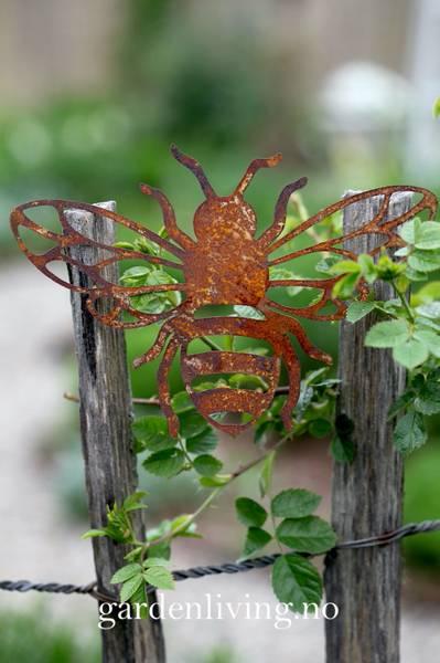 Bie, rust outcut - 20 cm