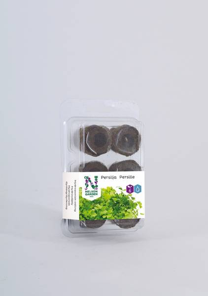Hydroponisk, plugg med frø, persille