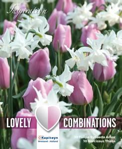 Bilde av Perfect Combinations - Tulipan og narsisskolleksjon -  Rosa
