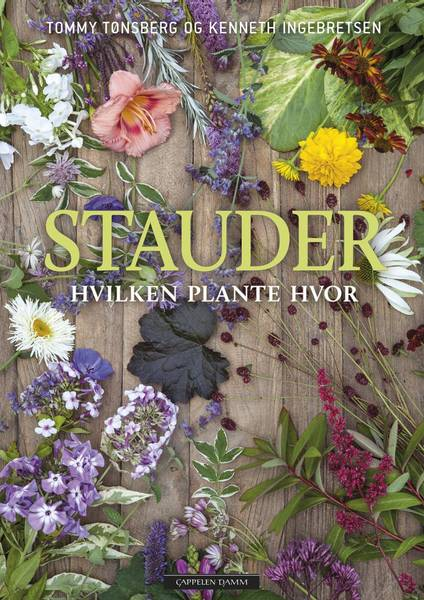 Stauder - hvilken plante hvor