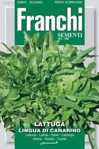 Bilde av Salat, eikeblad- 'Catalogna' - Lactuca sativa