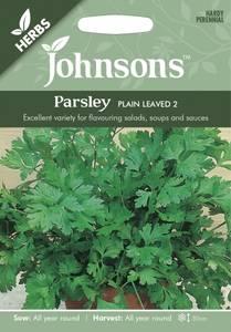 Bilde av Persille 'Plain leaved 2' - Petroselinum, Flatbladet