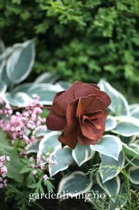 Bilde av Rose 13 cm med buet stang