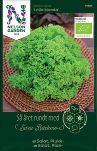 Bilde av Salat, Lollo- 'Lollo Bionda' - Lactuca, Organic