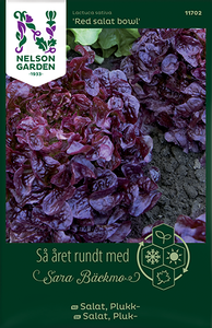Bilde av Salat, Eikeblad- 'Red Salad Bowl' - Lactuca