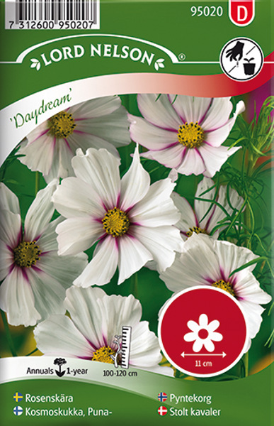 Pyntekorg 'Daydream' - Cosmos bipinnatus