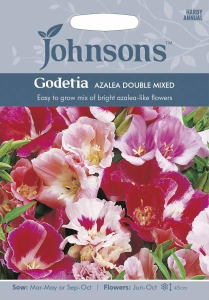 Atlasblomst 'Azalea Double Mixed' - Clarkia amoena