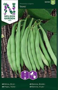 Bilde av Bønne, brekk- 'Saxa' - Phaseolus vulgaris