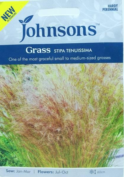 Penselfjørgras - Stipa tenuissima