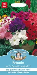 Bilde av Petunia 'Mr F's Grandiflora Mixed'