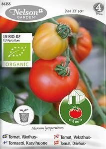 Bilde av Tomat, drivhus 'Ace 55 VF' - Organic