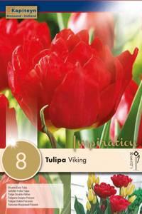 Bilde av Tulipan 'Viking' - 8 stk